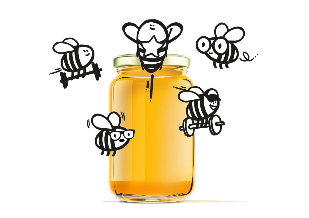 Illustrationen Bienen